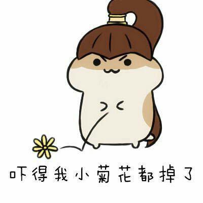 老婆让我强奸岳�_吓得我系列(仓鼠家)-斗图大会-真正的斗图网站-dou